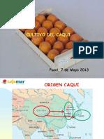 caqui 2.pdf