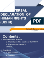 Clarrise_the Universal Declaration of Human Rights