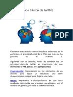 10 Principios Básico de La PNL
