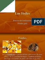 Los Fosiles (1)