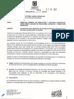 Circular No 006 12-07-2017 Lineamientos Encarg Directivos