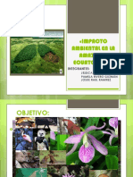 Impacto Ambiental en La Amazonia Ecuatoriana»