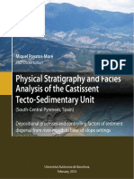 Physical Stratigraphy and Facies Analysis of the Castissent Tecto-Sedimentary Unit