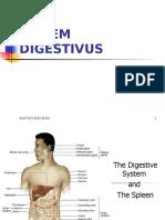 8 Sistem Pencernaan