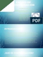 Diapositivas de Consolidacion