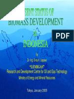 EvitaLegowo Biomass Indonesia.pdf