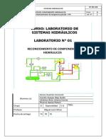 Informe 1- HIDRAULICA.docx