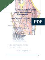 Monografia Anatomia