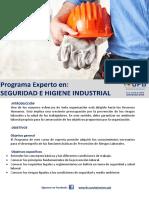Experto en Seguridad e Higiene Industrial