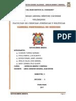 DERECHO-MINERO trabajo final.docx