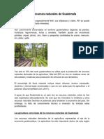 recursos naturales de guatemala.docx