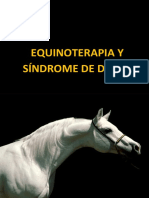 Equinoterapia y Sindrome de Down