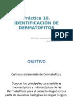 Prática 10. Identificación de dermatofitos