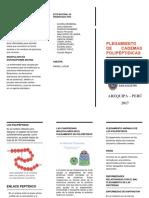 Plegamiento de Cadenas Polipeptidicas