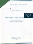 Antônio Miranda - Lobo Em Peles de Ovelha