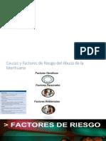 Diapositivas de Cannabis