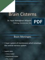 48574 Brain Cisterns