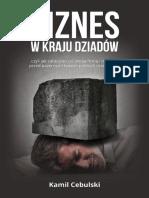 Kamil Cebulski - Biznes w Kraju Dziadów