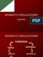 AP Circulatorio 130502230335 Phpapp01