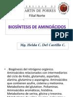 181089689 Biosintesis de Aminoacidos