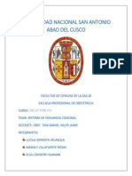 SISTEMA DE VIGILANCIA COMUNITARIA.docx