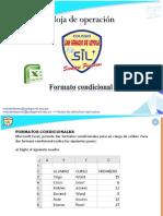 FORMATO CONDICIONAL 2017
