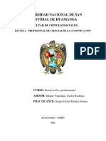 Plan de Trabajo 1 via via Ayacucho