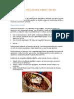 Tutorial Sencillo Manejo de Pseint y Dfd