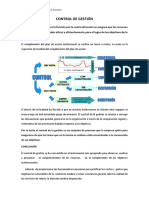 CONTROL DE GESTIÓN.docx