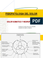43020902 Fisiopatologia Del Dolor Ppt Share