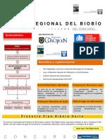 Concurso _ Teatro Regional del Bio Bio, Chile.