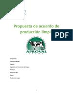 Propuesta Produccion Limpia Aproval 2