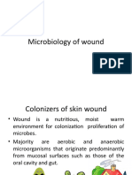 Microbiology of Wound