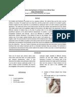 Formal Report in BioChem Lab.docx
