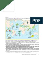 AgroMundo_QUESTÕES.pdf