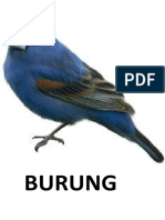 BURUNG.docx