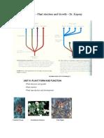 plant_botany.pdf