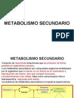 8. METABOLISMO SECUNDARIO.pdf