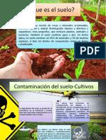 Contaminación Suelo Tratamientos Cultivos