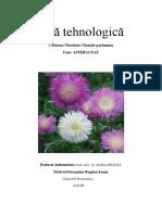 Fişă Tehnologică Centaurea Moschata