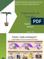 Organização do Trabalho 06.pdf