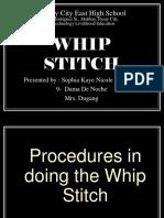 Whip,Running and Straight Stitches