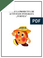 anexe_la_proiectul_turtita.doc