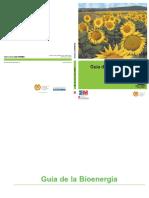 Energia-biomasa.pdf