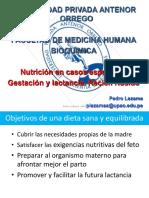 Nutrición en Casos Especiales- Gestación y Lactancia