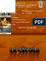 Celula Vegetal Exposicion