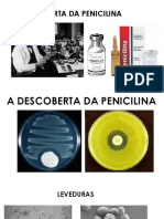 A Descoberta Da Penicilina