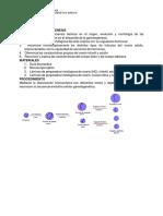 'documents.tips_espermatogenesisdocx.docx