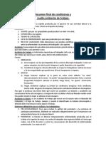 Resumen Final de Condiciones y Medio Ambiente de Trabajo