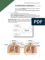 135322808-La-respiracion-Ejercicios-de-respiracion.pdf